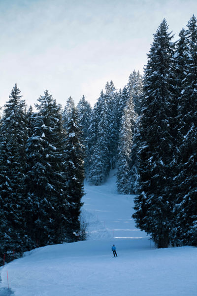 Cold Temperature Forest Motion Mountains One Person S Snow Tranquil Scene Winter