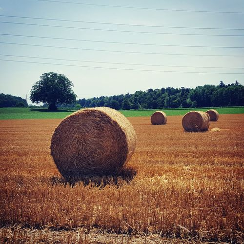 Summertime Summer Landscape Landscape_Collection Kornfeld Strohballen Ontheroad