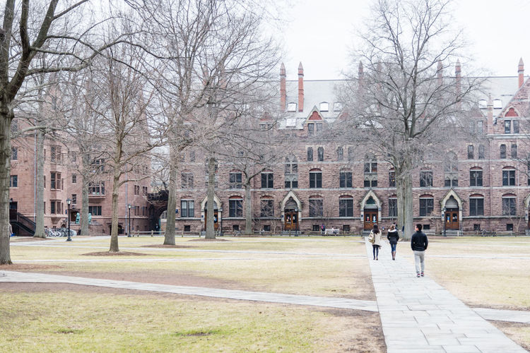 Architecture Connecticut Historic History Residential Structure Studies Tree University Campus USA USAtrip Yale University Yale University 💙