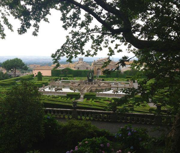 Garden Urban Landscape Villa Lante