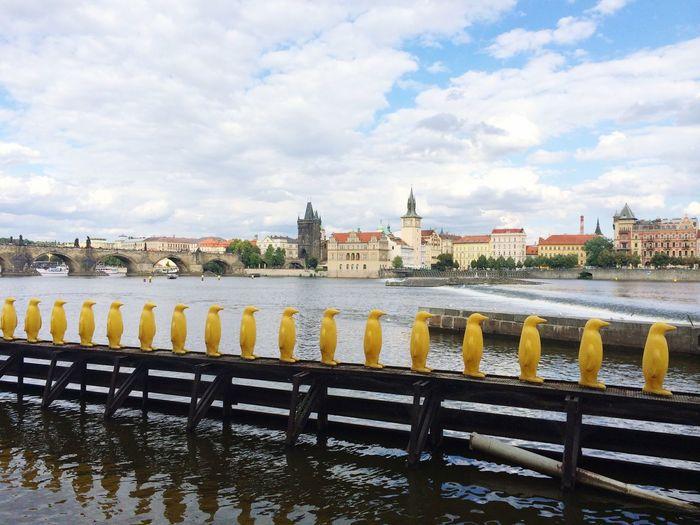 Prague Vltava Summer