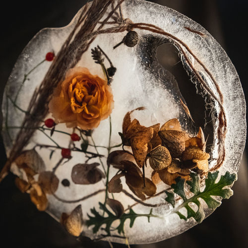 High angle view of dried flower on table