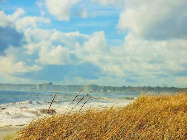 Beachphotography Beach Oceanview Cityscape Oceanside Stunningview Vibrant Colors Coast City View  Unsettled Sky And Clouds Roughsea Vibrant Ocean Oldorchardbeach Mainecoast Maine Waves, Ocean, Nature Waves Crashing Stunning Ocean View Dune Grass Unique Coastline Beach Waves