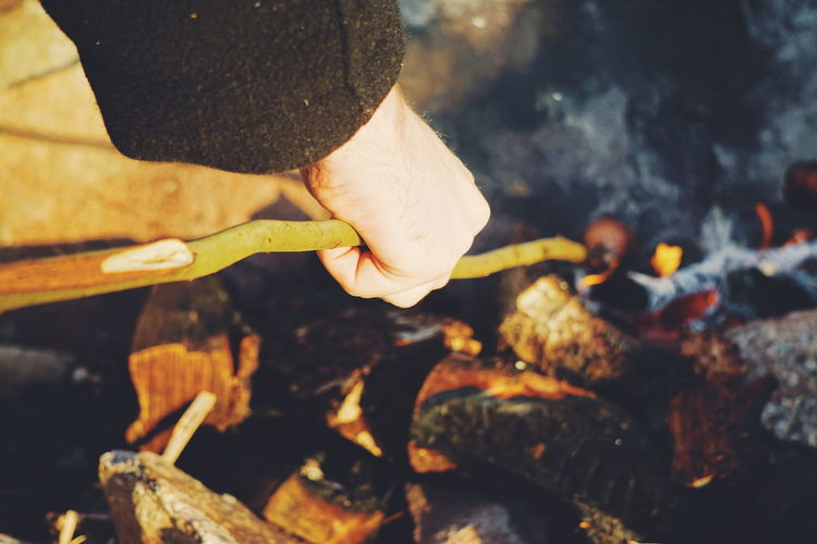 Cropped Hand Holding Stick During Campfire