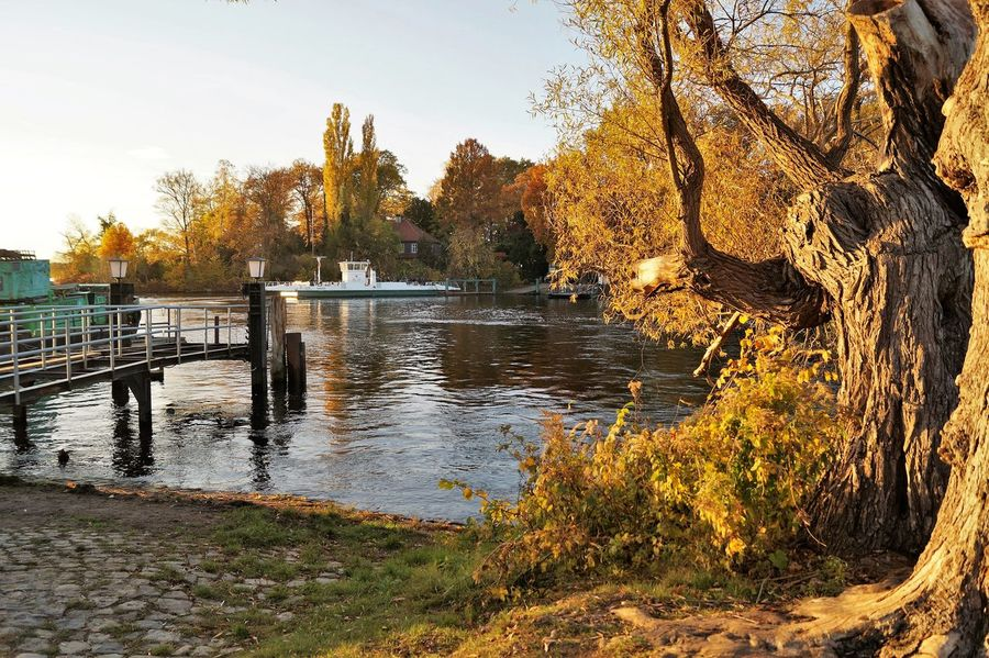 Autumn Autumn Colors Berlin Day Ferry Landing Stage Nature Outdoors Pfaueninsel Reflection Sky Sunset Tranquil Scene Tranquility Tree Water Yellow