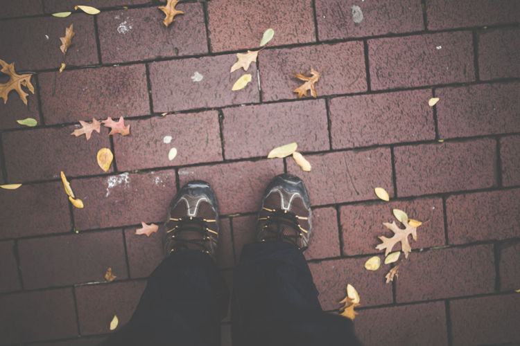 Low section of man standing by fallen dry leaves on footpath