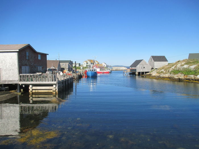 Blue Clear Sky Marine Life Nature Ocean Scene Outdoors Sky Water Waterfront