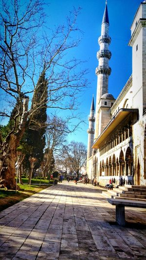 Suleymaniye Suleymaniyemosque Turkey Architecture Built Structure Building Exterior Tower Tree Transportation Clear Sky Car Street Tall - High Bare Tree Blue Travel Destinations Leading Outdoors The Way Forward Town Hall Tall Day
