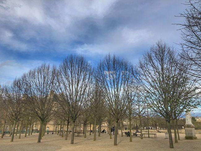 Jardin du Luxembourg Jardin De Luxemburg Sky Cloud - Sky Tree Plant Nature Day Built Structure Park - Man Made Space Outdoors