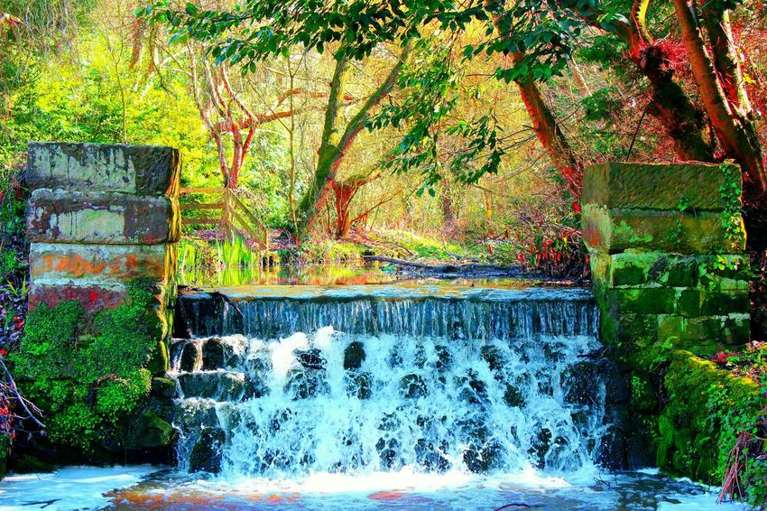Showcase April Mini Waterfalls Spring Has Arrived 2016 Canonphotography Canon EOS 600D DSLR Walikng In The Countryside