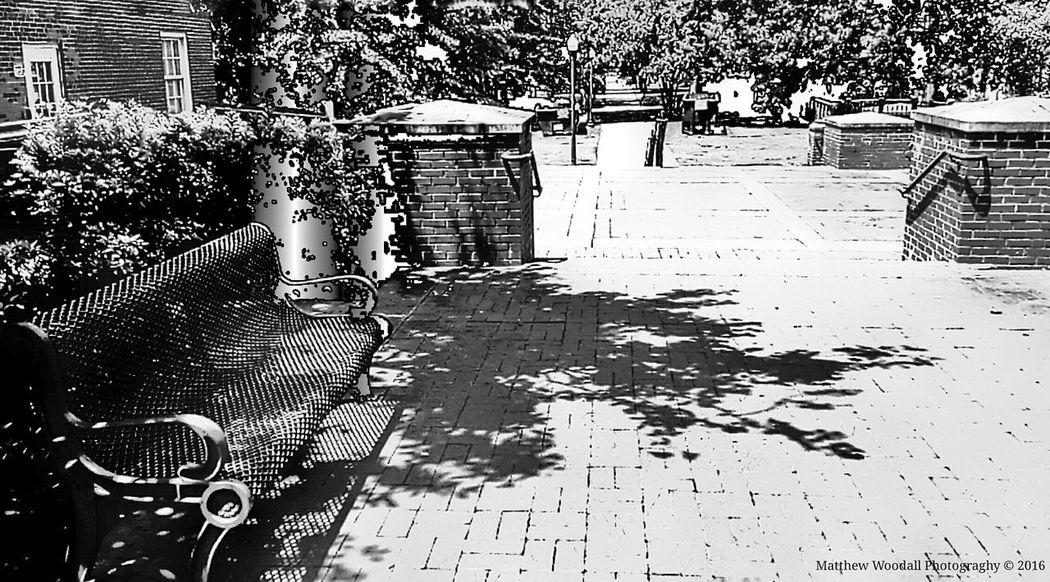 'Rest stop' Auburn University Campus Grounds Auburn, Alabama Benchesoftheworldunite College Grounds College Campus Benches And Branches Bench Lover  Benches_Of_The_World_Unite Sidewalk Photograhy Benchlovers College Life Black And White Photography Android Photography Snapseed