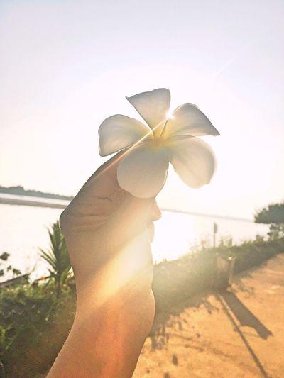 ชีวิต คือ อัลบั้มภาพความทรงจำ จะสวยหรือไม่ ขึ้นอยู่กับเราเลือกสะสมอะไร