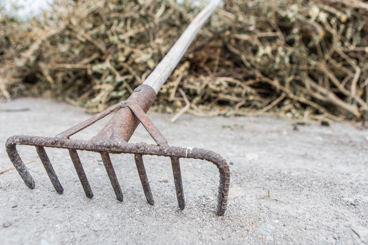 The rake is rusty with piles of dry branches on the floor in the farm Day No People Nature Metal Outdoors Close-up Selective Focus Rake Rusty Piles Of Wood Dry Branches Farm Focus On Foreground Land Wood - Material Abandoned Plant Field Railing Single Object Old Connection Brown High Angle View Concrete