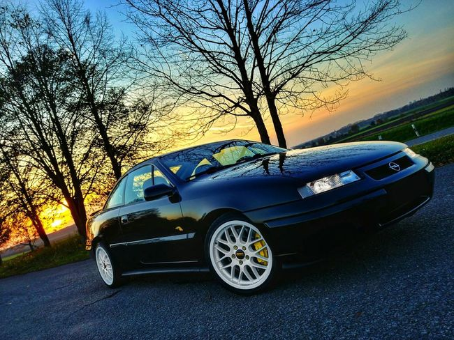 Calibra Car Tree Transportation Sunset No People Sky Outdoors Cali Opel Snapseed BBS BBS_Rims Brembo  Nature Brembobrakes Driving Colors Of Autumn Colors Crash Day