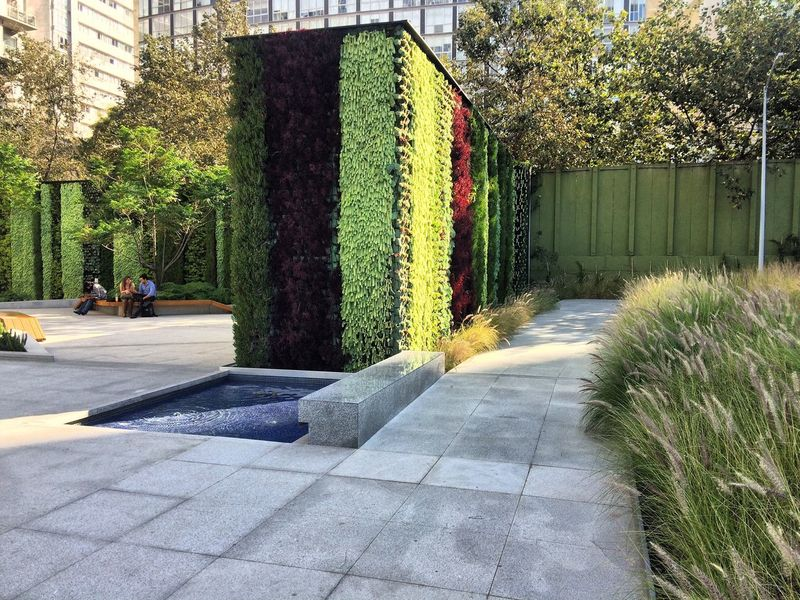 Architecture Tree Growth Nature Sunlight Day Formal Garden Outdoors Plant Green Color Grass Road Architecture No People Garden Path Beauty In Nature Mexico City