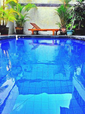 Swiimming Swimming Pool Nature Water Water - Collection Popular Photos Enjoying Life Blue Water