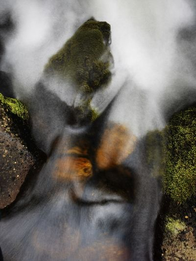 Blurred motion of waterfall in forest