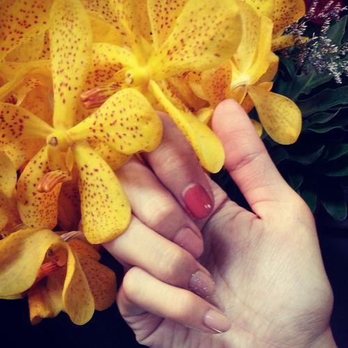 Fashion #style #stylish #love #TagsForLikes #me #cute #photooftheday #nails #hair #beauty #beautiful #instagood #instafashion # Flowers#nature#hangingout#takingphotos#colors#hello Worldflorafauna F Enjoying Life Goodnight