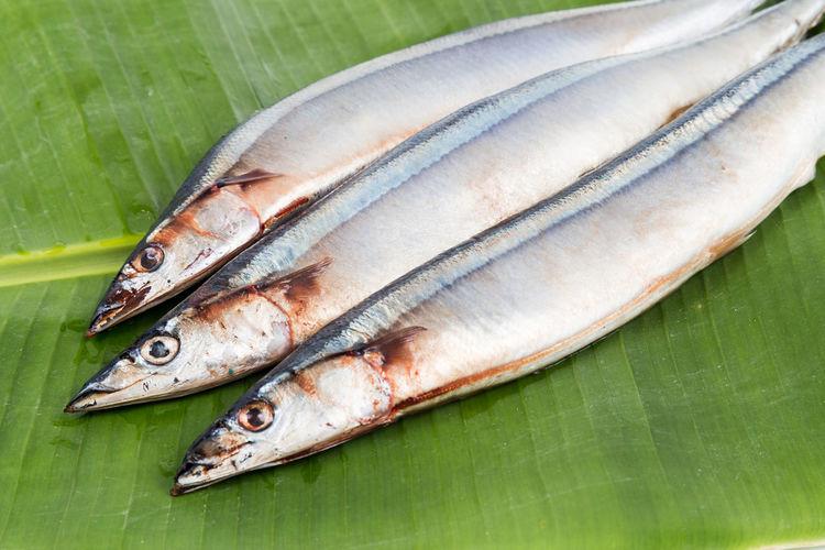 Fresh Japanese Sanma fish on leaf Fresh Fruit Bowl Food And Drink Japanese Food Sanma Banana Leaf Fish Healthy Eating Seasonal