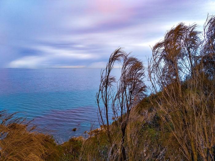 coast at daybreak Mornington Peninsula Mount Martha Australian Landscape Nature Sunset Sunrise Dawn Ocean View Water Sea Sky Horizon Over Water Cloud - Sky Tranquil Scene Ocean Calm Tranquility Coast Idyllic Shore