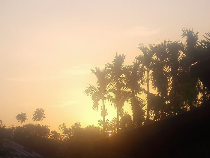 As the sun rises Enjoying Life