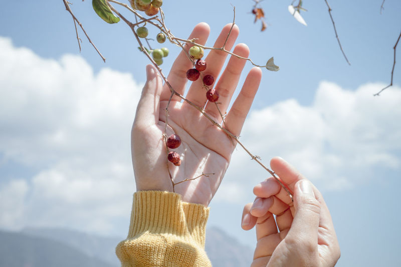 Low angle view of person holding apple against sky