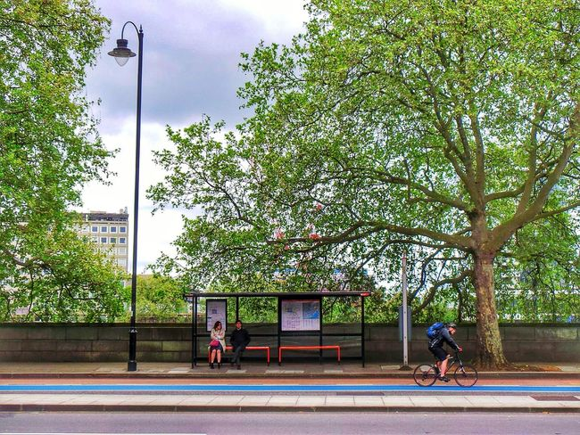 London lifestyle Bus Stop Waiting Bus Stop On Road Bus Stop Bus Stop, Candid Photography Green Trees Trees London Street Scene London On A Bike London United Kingdom London Streets London Streets Portraits London Street Photography