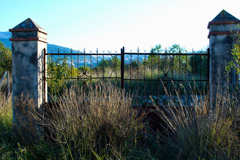 Abandoned Places Architecture Clear Sky Column Countryside Day Gate Grass Growth Metal Gate No People Plant Plants Protection Ruins Rusted Gate Rusted Metal Gate Safety Security Two Columns