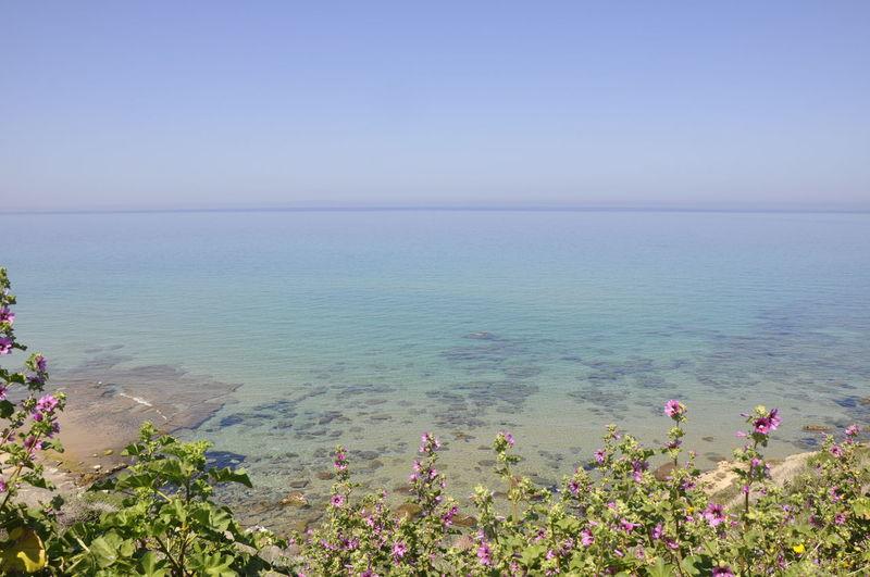 Mare del Golfo