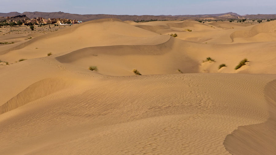 Desert Land Environment Landscape Sand Scenics - Nature Arid Climate Climate Sky Tranquil Scene Sand Dune Tranquility Nature Non-urban Scene Beauty In Nature Day No People Africa Hot Adventure Hiking Trekking Physical Geography Atmospheric