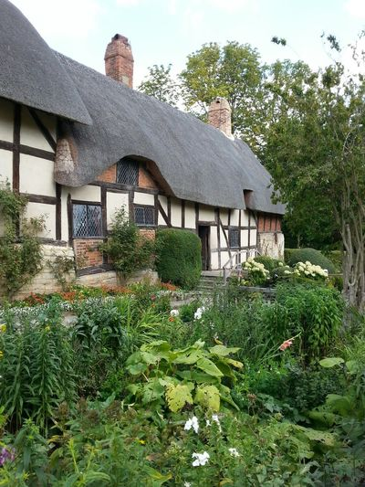 Anne Hathaway's Cottage Landscapes And Lakeviews