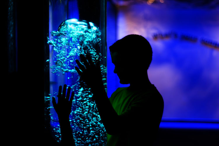 Aqua Aquarium Baltimore Aquarium Blue Bubbles Illuminated Kids Kids Having Fun Leisure Activity