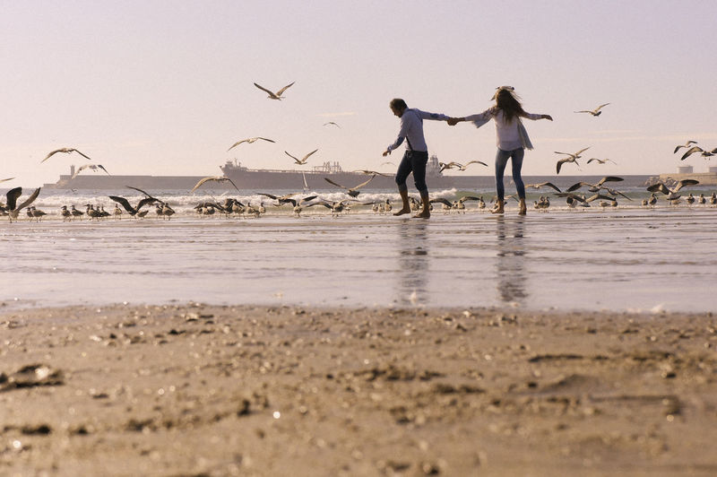 Couple holding hands by birds on shore at beach against sky