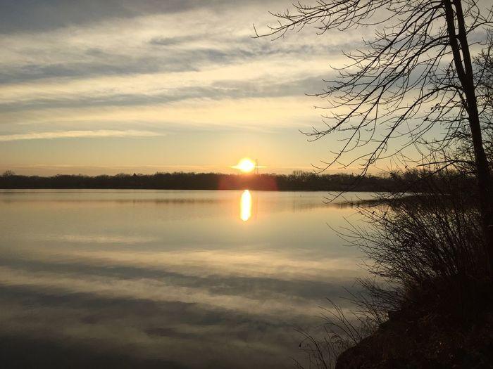 Lake Lake View Lakeshore Lake Zürich Sunrise Sunrise_sunsets_aroundworld