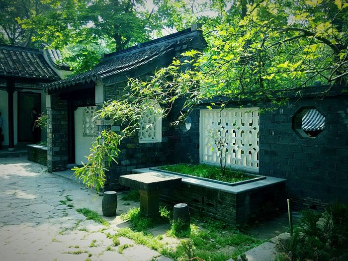 China Culture China Style Taking Photos Green Plant Flowers,Plants & Garden Old Building  Houses And Windows