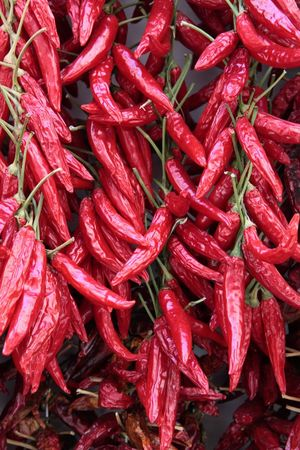 peproncini calabresi #hot #peppers #red #calabria Abundance Food Large Group Of Objects No People Red Spice
