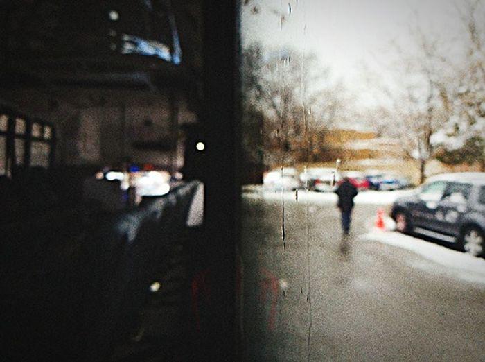 Half n Half Snow ❄ Defocused Window Half N Half Car Tree Window Frame Snow Covered