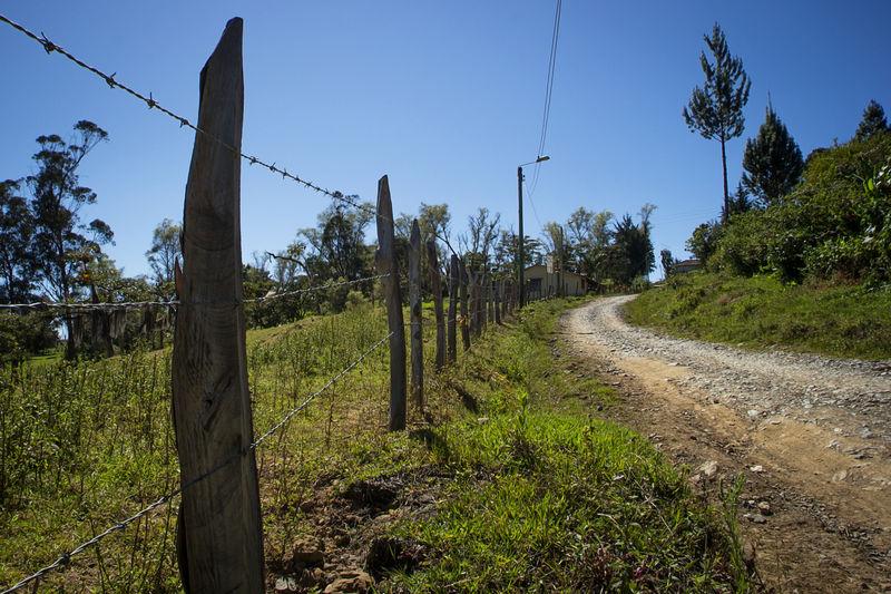 Rural path at