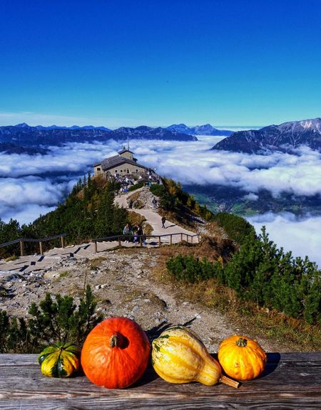 Architecture Aussicht Autumn Bavaria Colourful Creative Creativity Fall Germany Herbst Hiking Kehlsteinhaus (Eagle's Nest) Kürbis Mountain Nature Nature_collection Outdoors POV Pumpkin Sky Sky And Clouds Sunshine The Great Outdoors - 2016 EyeEm Awards Urlaub Vegetables First Eyeem Photo