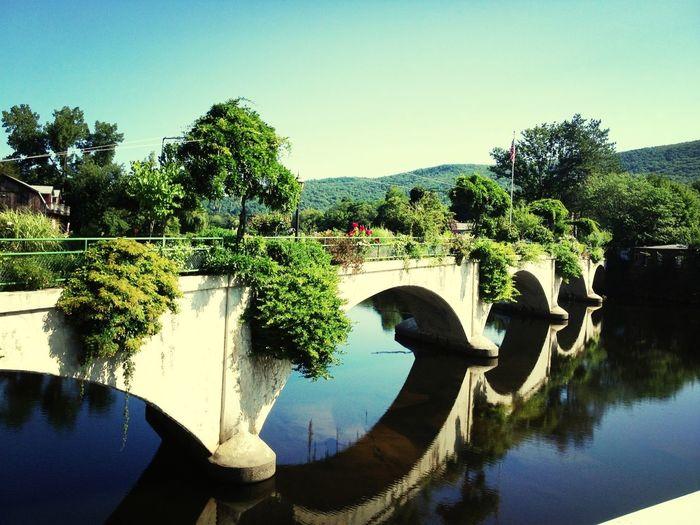 Bridge Water_collection Flowerporn