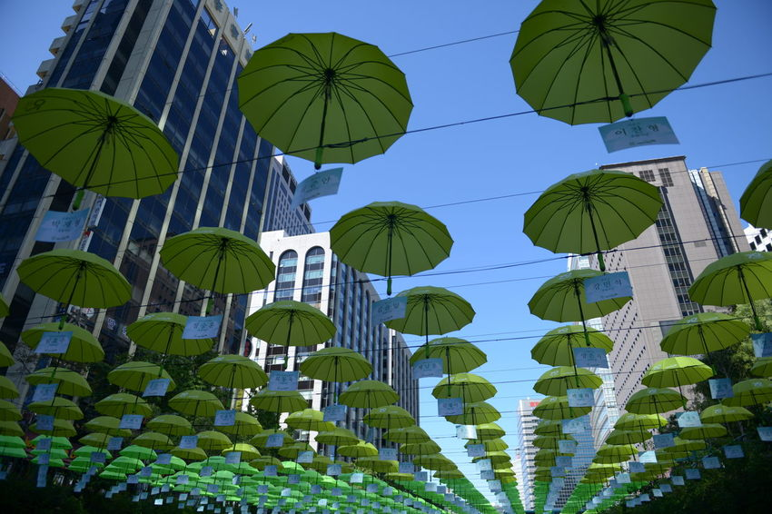 Low Angle View Sky Umbrella No People Nature Protection Side By Side Day In A Row Hanging Security Blue Clear Sky Built Structure Parasol Sunlight Outdoors Large Group Of Objects Green Color