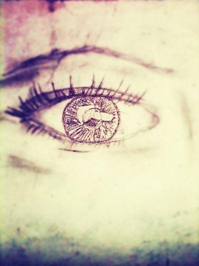 My Drawings.