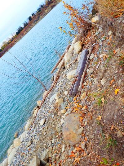 Relaxing Nature Waterscape Color Portrait