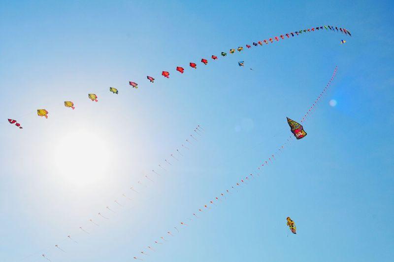 Traditional Kite Festival EyeEm Best Shots EyeEmNewHere EyeEm Selects EyeEm Gallery EyeEm Best Edits Traditional Kite Kite Flying Kite Festival Traditional Kite Festival Layangan Flying Kite - Toy Cheerful Mid-air Celebration Sun Happiness Bird Blue Motion Kite Formation Flying