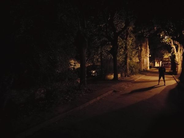 Magic garden Light Light And Shadow Lantern Lanterns In The Dark Shadow Shadows & Lights Dramatic Colours Garden Park Park - Man Made Space Night Contrast Nature Trees Tree City