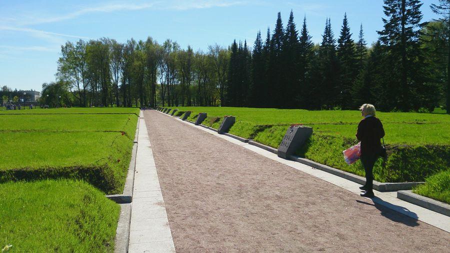 Full length of man walking on grassy field