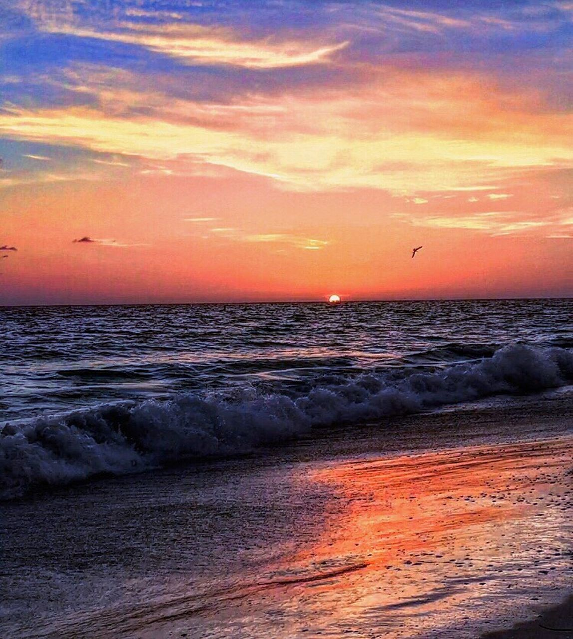 sunset, sea, horizon over water, beauty in nature, scenics, orange color, sky, nature, tranquil scene, cloud - sky, beach, water, tranquility, outdoors, no people, silhouette, wave, sand, bird, animal themes, day