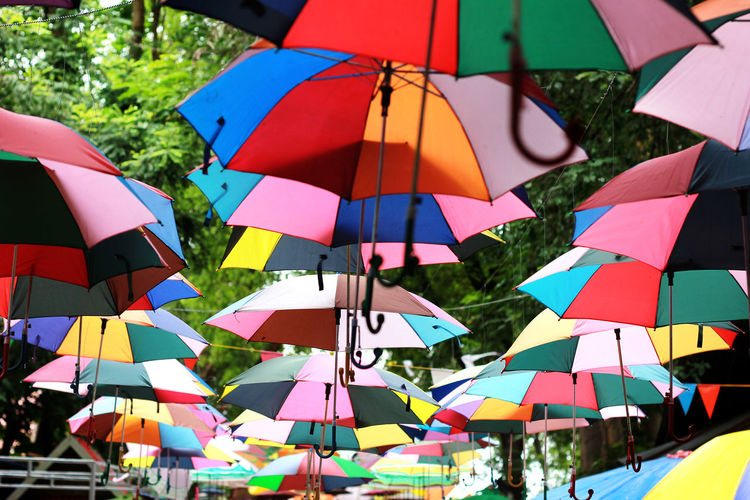 Color Creative Adorn Beautiful Abundance Arrangement Choice Close-up Day Hanging In A Row Initiative Large Group Of Objects Multi Colored Nature No People Outdoors Parasol Protection Safety Security Sunlight Umbrella Umbrellas Variation Love Is Love