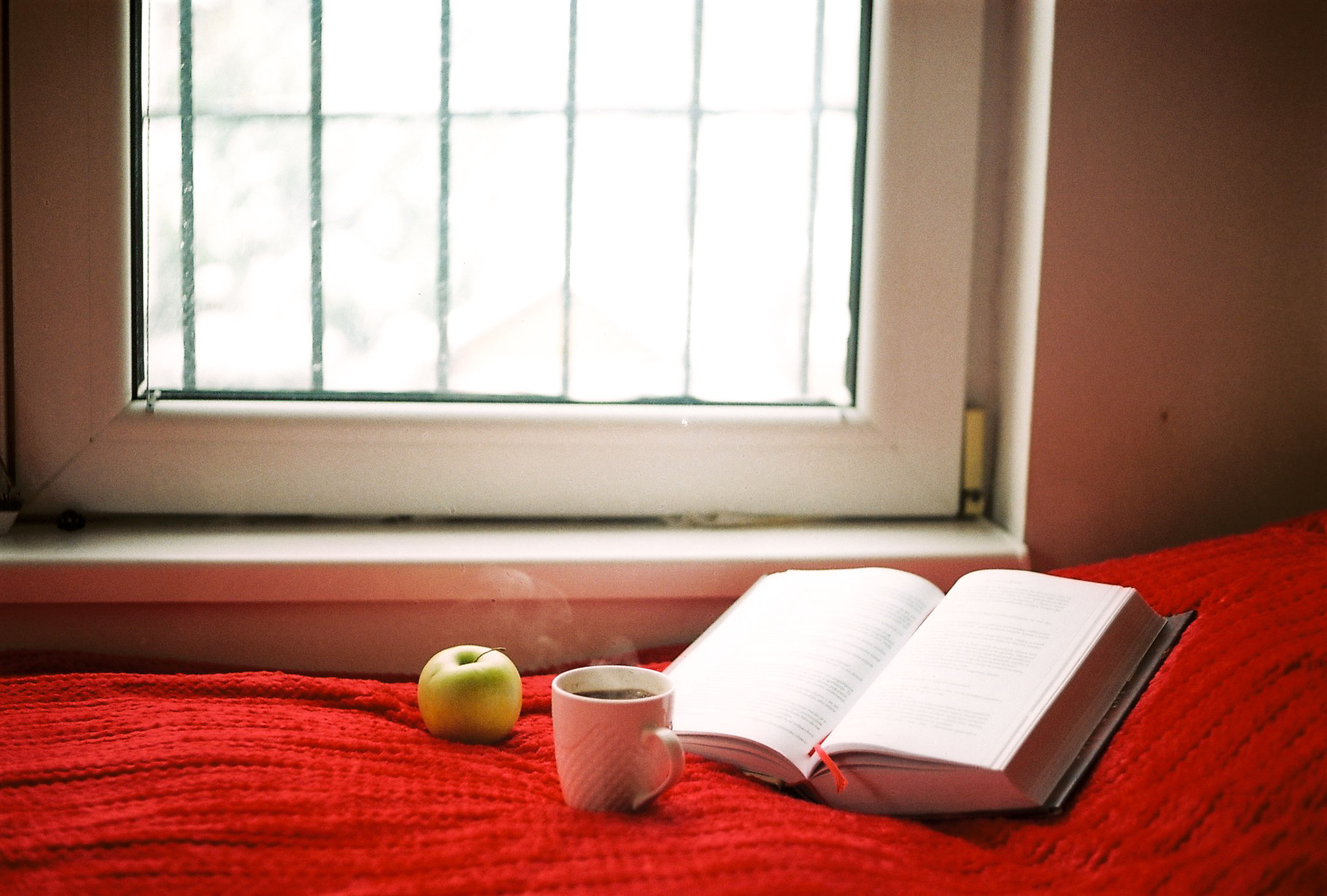 window, room, indoors, red, interior design, window covering, floor, flooring, furniture, home interior, domestic room, publication, no people, book, table, day, food and drink, cup, living room, sunlight, house, lifestyles, mug, bed, paper, nature