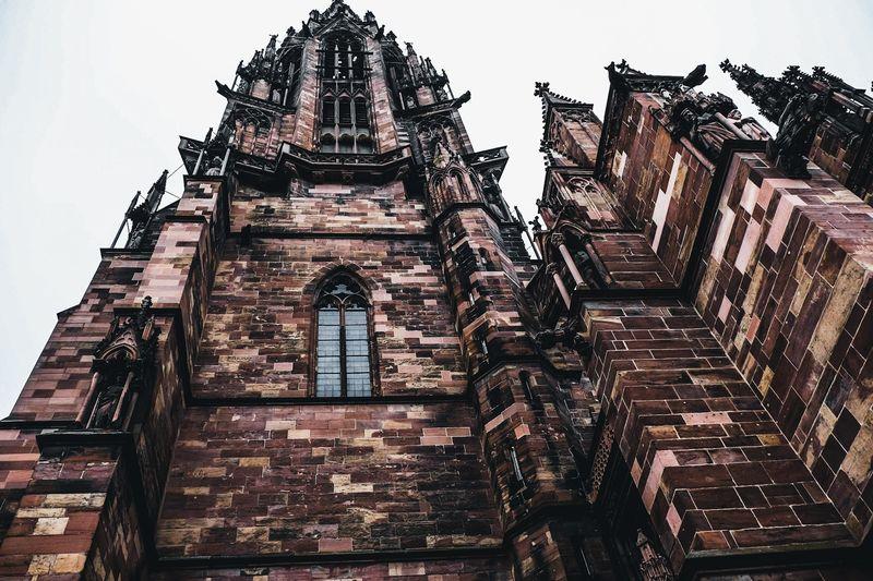 Das Münster in
